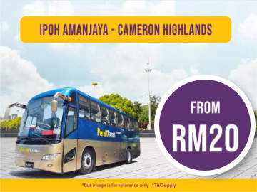 Express Bus from Ipoh to Cameron Highlands
