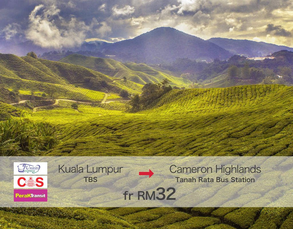 Bus from Kuala Lumpur (TBS) to Cameron Highlands (Tanah Rata)
